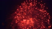 independency : Red Color Night Fireworks Stock Footage