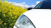 blooming : Rapeseed and a car; green, bio fuel concept. Stock Footage