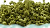 pellet : Concept hops in granules for brewing at the brewery. Filmati Stock