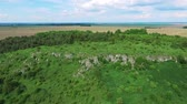 summer : Aerial view of landscape, forest, field Stock Footage