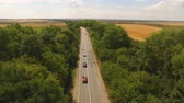 asmak : Aerial view of cars moving on two lane road in forest. 4K