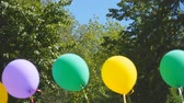 helyum : Multi-colored balloons in the wind