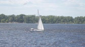 ambiance : A white sailboat sails along the river in the background of a forest on the shore. Slow motion