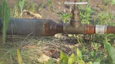 szelep : Old rusty pipes and a water tap. Water leakage. Slow motion Stock mozgókép