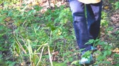 wandelstok : Man walking on the forest grass Stockvideo