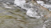 kütük : Water flowing in a rough stream close up. Camera panning