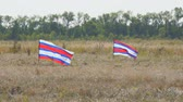 平等 : Just two striped flags waving in the wind on a natural background