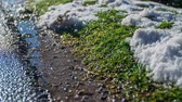 deslizamento : In the end of the season the snow turns in to a water and as a drops comes to the ground. Stock Footage