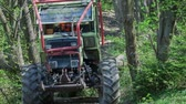 wood : A tractor is slowly driving on a forest path and it is pulling tree trunks behind which are fastened with a chain. Close-up shot.