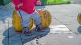squash family : A toddler is sitting on a pumpkin pie. There are two more in the background. Its Halloween time. Stock Footage