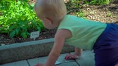 zaměřit se na popředí : Curious toddler discovering around the garden and pulling out the rucola tag on a hot summer day.