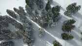 śnieżka : There is a lot of snow on spruce trees. This is happening at a famous ski resort in Slovenia. Aerial shot.