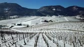 śnieżka : We can see vineyards and hills in the background. Its winter time and nature looks beautiful and white. Wideo