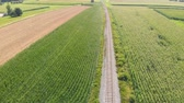 linha do horizonte : Beautiful green fields and a railway is leading in between. Its a gorgeous summer day. Aerial shot. Stock Footage