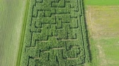 slowenien : A beautiful green corn field in the summer time. Aerial shot.