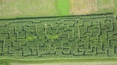 szlovénia : There are fascinating green patterns seen on the corn field. Raised-relief map. Aerial shot. Stock mozgókép