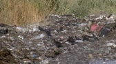 stink : a garbage dump pollutes the environment Stock Footage