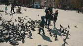 wing : Day suny shot of city doves seeding by family on the town square, 100FPS slowmotion