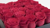 luxo : Box of red roses flowers, gift concept Vídeos