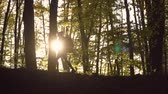 pantolon : Female skinny tourist is walking through the fall forest, sunny morning, slowmotion Stok Video