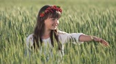 věnec : Slim young girl in gorgeous flower wreath tounching gently the grains of green wheat, enjoying the beauty of nature in the country