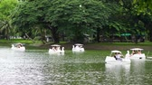 wesołe miasteczko : BANGKOK - JULY 21, 2017: Tourists in swan paddle boats on the lake in Lumphini Park, Bangkok Wideo