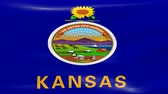 kansas : Waving Kansas Flag, ready for seamless loop. Stock Footage