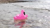 kıbrıs : The inflatable pink flamingo circle floats in the sea. Stok Video