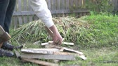 железо : A man stabs firewood in the garden with an ax. Стоковые видеозаписи