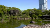 kansai : the beautiful view of a japanse landscaping garden and famous abeno harukas skyscrape in osaka.