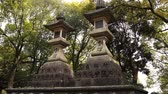 клен : NARA, JAPAN - APRIL 16, 2018: Stone lamps which prayers respectfully offer to the temple peacefully standing in the forest Стоковые видеозаписи