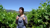 виноградник : elegant beautiful asian woman traveler walking in winery vineyard outdoors. chinese female smiling backpackers at farm house relax under sunshine with green plants on spring and blue clear sky. Стоковые видеозаписи