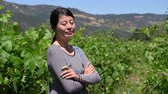 caído : smiling woman winemaker crossed arms near grapes in vineyard at summertime.