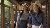 bois : two young girls tourists visiting historic japanese traditional house walking in hallway. Vidéos Libres De Droits