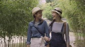 quioto : two young Asian women travelers point and talk about surroundings walking in nature forest. girl friends relaxing chatting in bamboo grove travel osaka japan. beautiful best sisters walk hold hands