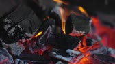 огонь : Fire Burning In Charcoal Grill Closeup. Burning Coal With Fire Flames Стоковые видеозаписи