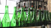 system : Beer Brewing Process. Conveyor Line With Bottles At Brewery Enterprise, Machine Fillings Bottle With Beer