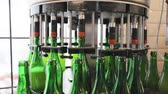 processo : Beer Brewing Process. Conveyor Line With Bottles At Brewery Enterprise, Machine Fillings Bottle With Beer