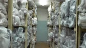 distribution : Many long shelves with rolls of fabrics in stock Slow motion
