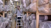 racks : Auditor Counts Merchandise in Warehouse. He Walks Through Rows of Storage Racks with Merchandise. Slow motion Stock Footage