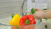 torneira : Woman washes fresh vegetables under the tap in the sink in the kitchen puts them in a glass cup Stock Footage