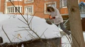 мороз : young woman clean car after snow storm with scraper Стоковые видеозаписи