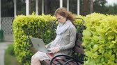 bank : Woman with laptop relaxes on a bench in a beautiful green park. A young perennial woman in an arboretum working behind a laptop. Technology in the open air