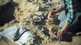 dead animal : The man is engaged in excavating bones in the sand, Skeleton and archaeological tools.