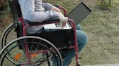 sérült : A disabled man is sitting in a wheelchair and working on a laptop in the park