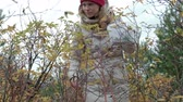 musgoso : Young woman picking berries from a bush in the forest in autumn in cold weather