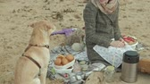 hot dog : a young woman in a coat sits on the beach by the river, ocean, has a picnic, cooks vegetables and meat on the grill, a dog is playing nearby, cold weather