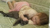 кошка : happy girl child with blond hair and pigtails lying on the sofa stroking a gray cat Стоковые видеозаписи