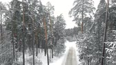 geada : winter country road in a snowy forest, aerial view with drone