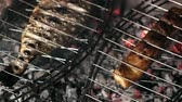 bonfile : BBQ cooking meat,BBQ, cooking meat Stok Video